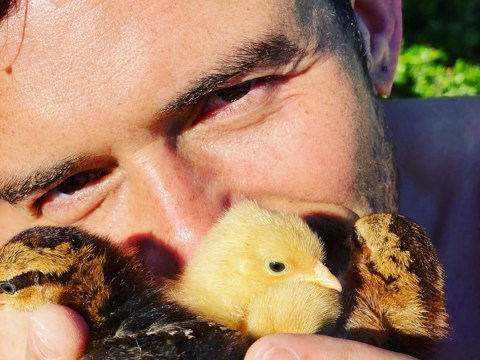Orlando Bloom snuggling up to fluffy chicks is exactly what you need this Easter