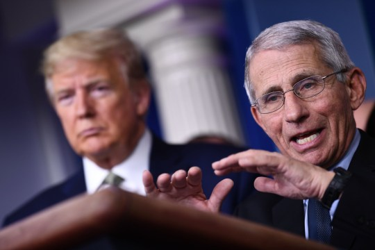 Dr Fauci and Donald Trump