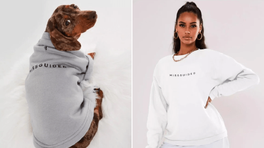 Matching hoodie with dog