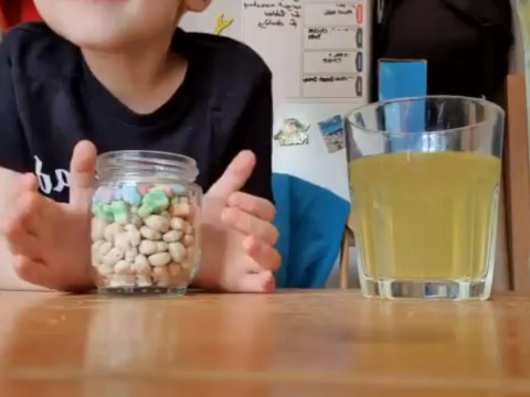 Parents test their children's patience with the temptation challenge