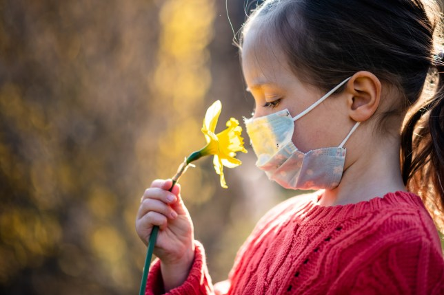 Girl with protective face mask trying to smell daffodil