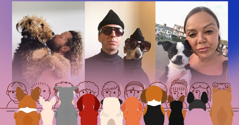 people who look like dogs