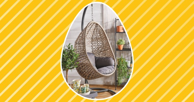 Aldi egg chair
