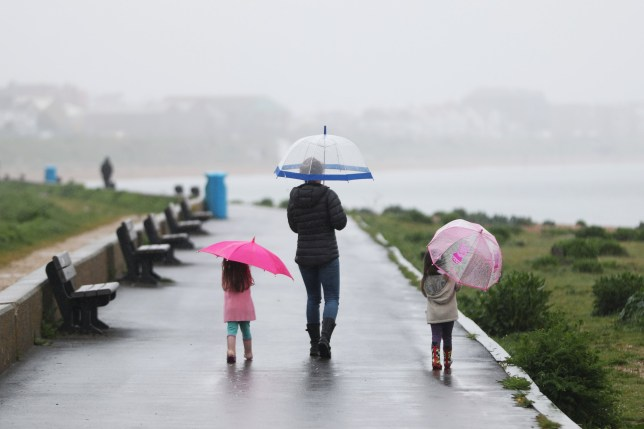 Family walking with umbrellas in the rain