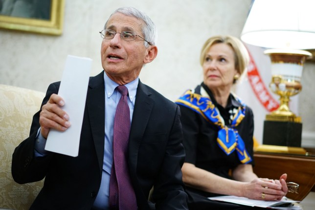 Photo du Dr Anthony Fauci à côté de la photo du Dr Deborah Birx