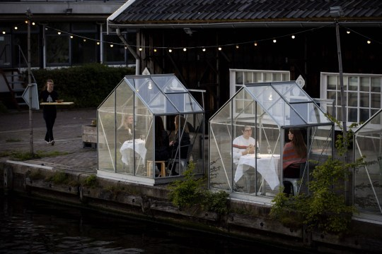 People have dinner in a so-called quarantine greenhouses in Amsterdam