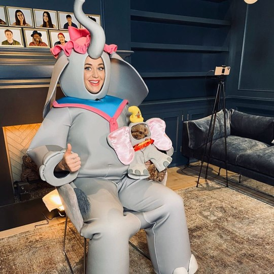 Katy Perry dressed up as dumbo for american idol