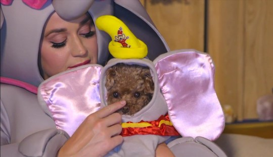 Katy Perry Disney singalong