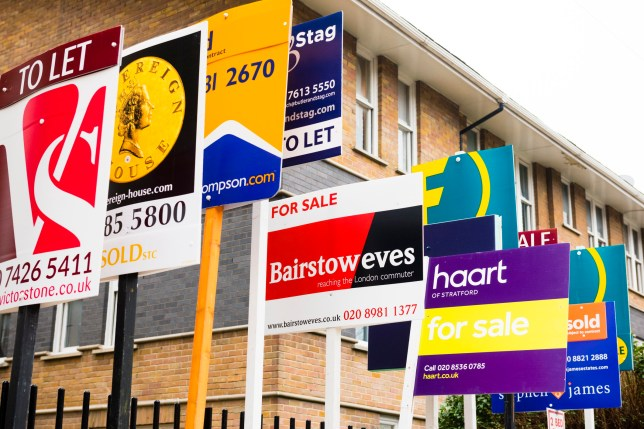 A row of estate agent boards