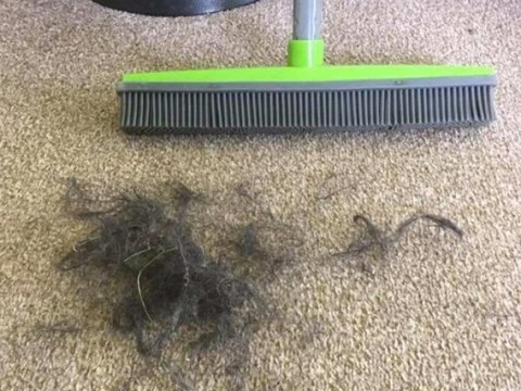 Mum shares tip with silicone brush to get hair out of carpets – even ones that look totally clean