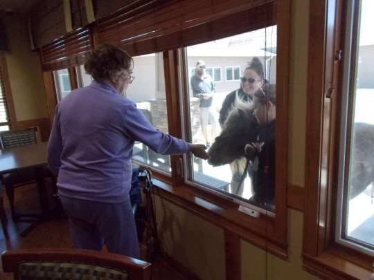 11-year-old Jorja Boller visits an old woman in a care home, along with her horse, standing outside the window