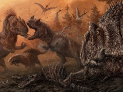 Dinosaurs resorted to cannibalism when food was scare, study claims