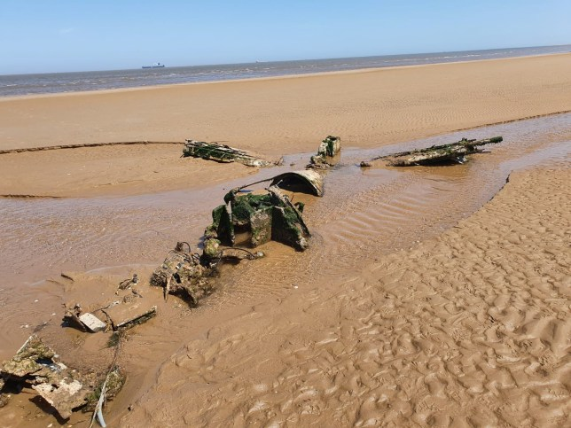 The wreckage of the WWII RAF Bristol Beaufighter which has been discovered on a Cleethorpes beach in in North East Lincolnshire. See SWNS story SWLEplane. A pair of dog walkers stumbled across the wreckage of a rare WWII RAF fighter plane hidden on a beach where it had been buried under the sand for 76 YEARS. Debi Hartley, 51, was on a casual walk with her partner Graham Holden, 54, and their dog Bonnie when they made the ?one in a million? discovery. The carcass of the airplane revealed itself on an undisclosed patch on Cleethorpes beach, with its wings protruding through the shifting sands. The RAF confirmed that the wreckage is one of their Bristol Beaufighter, believed to be aircraft serial number JM333 of 254 Squadron RAF.