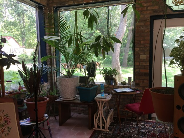 Where I Work: Sienna Beckman's working space in her conservatory