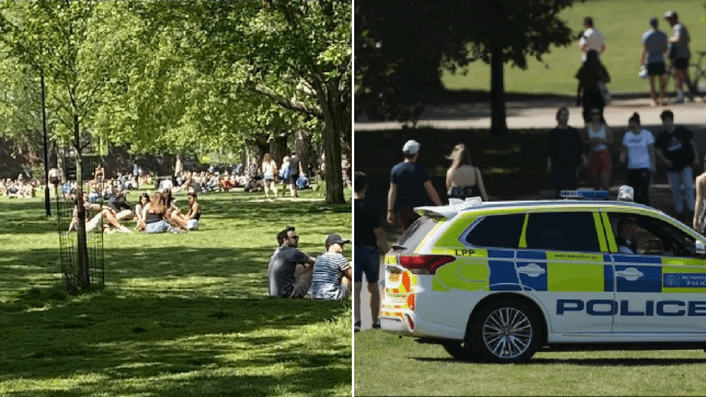 Police admit they're 'fighting a losing battle' after hundreds flock to parks