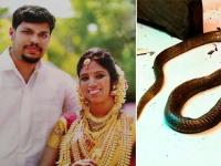 snake murder india
