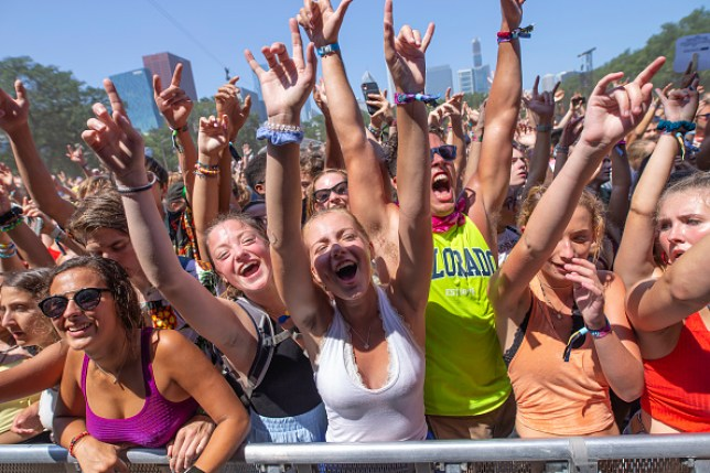 2019 Lollapalooza crowd