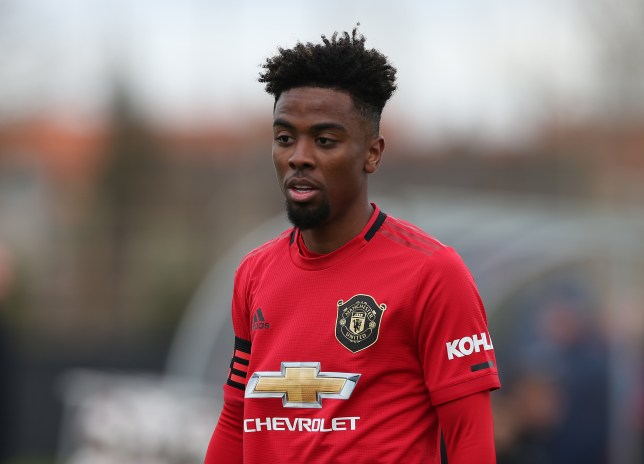 Angel Gomes looks on during Manchester United U23's clash with Club Brugge
