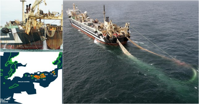 Monster supertrawlers spent 3,000 hours in UK's protected waters risking dolphins' lives