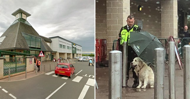 Giffnock, Scotland morrisons dog rain umbrella security guard