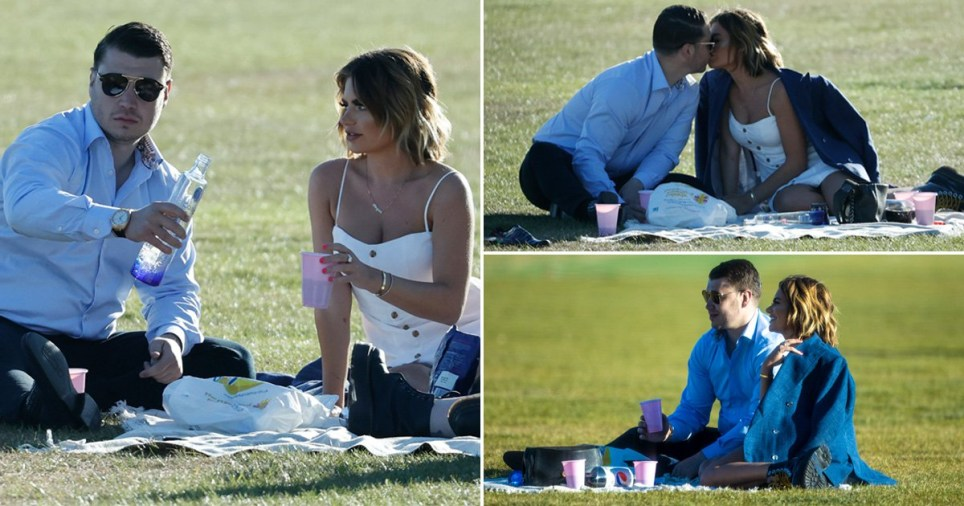 Megan Barton Hanson pictured on picnic date with millionaire businessman