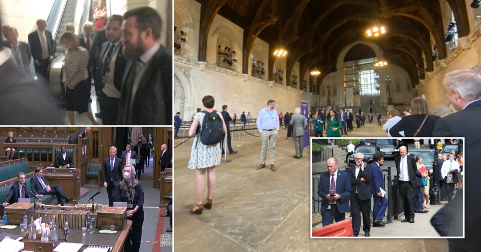 Remote voting scrapped by MPs despite 'farcical' queue looping around parliament