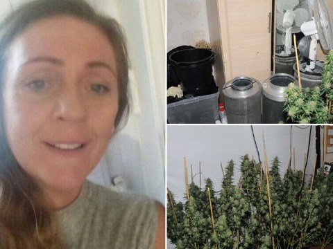 Mum tried to blame sunbeds for noise of weed she was growing in her bedroom