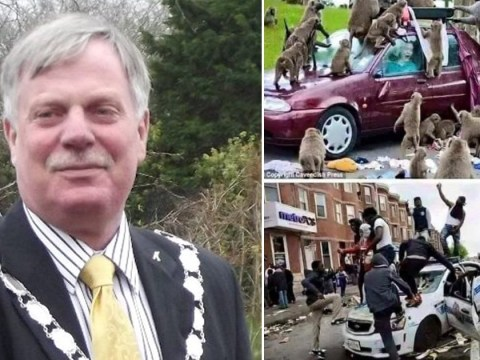 Councillor quits after comparing black protesters to monkeys jumping on cars at safari park