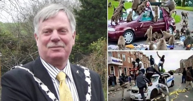 Pembroke Dock, South Wales councillor Peter Kraus has resigned after sharing images of Black Lives Matter protesters jumping on a police car and comparing them to a picture of monkeys climbing on a car in a safari park.