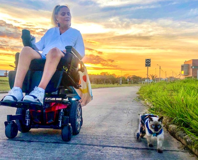 Quadriplegic Shannon Nelson and disabled cat Scooter rolling side by side