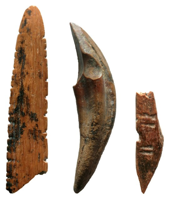 Tools made on bone and teeth were used to hunt small monkeys and squirrels, work skins or plants, and perhaps create nets at Fa-Hien Lena, Sri Lanka 48,000-years-ago. (Credits: M. C. Langley / SWNS)