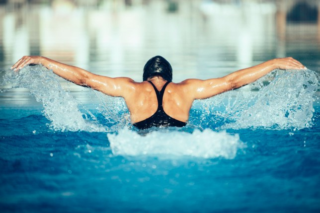 Stock image of butterfly stroke