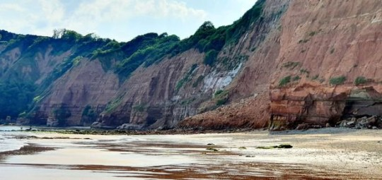 Cliff fall at Sidmouth, Devon, on Thursday June 25 which was just metres away from beachgoers. Credit: DevonLive/BPM/Glen Lear