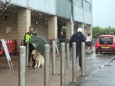 Morrisons security guard keeps good boy dry while he waits for his owner