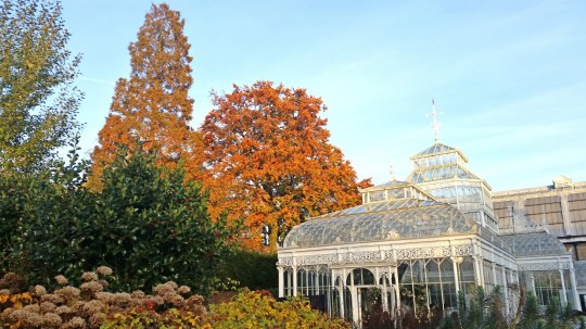 Horniman museum and Gardens in London.