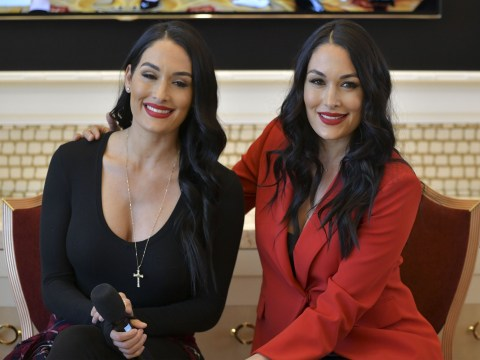WWE twins Nikki and Brie Bella reveal first baby photos and names of sons born just one day apart