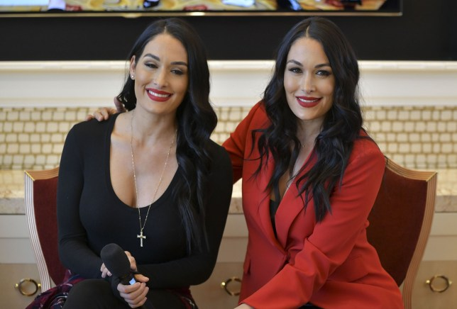 Mandatory Credit: Photo by MediaPunch/REX (10520209ao) Nikki Bella and Brie Bella speaking at the 'Fearless Female Leadership Creating Success with Strong branding and Unshakable Sisterhood' conference session Consumer Electronics Show, Las Vegas, USA - 07 Jan 2020