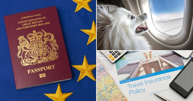 British holidaymakers will be given new guidance on travel insurance, passports and taking pets abroad as part of a post-Brexit advertising campaign
