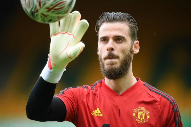 Mark Schwarzer has urged David de Gea to leave Manchester United
