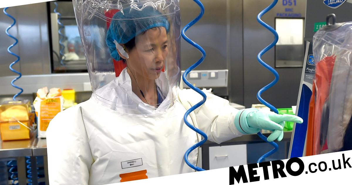 Chinese scientists 'found closest relative of coronavirus seven years ago' - metro