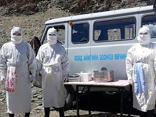 Deux cas de peste bubonique confirmés par le Centre national mongol pour les zoonoses dans la province de Khovd