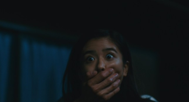 Ju-On: Origins, Netflix, The Grudge