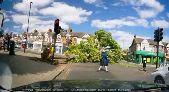 Screenshots of tree falling over in Ealing, west London on Saturday, July 4, narrowly missing a passing couple as Britain was battered by high winds