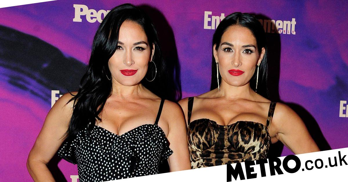 Nikki & Brie Bella Share Photo of Their Babies Sneaky Pandemic Meeting