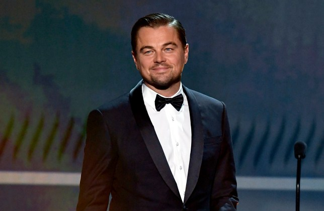Leonardo DiCaprio at awards