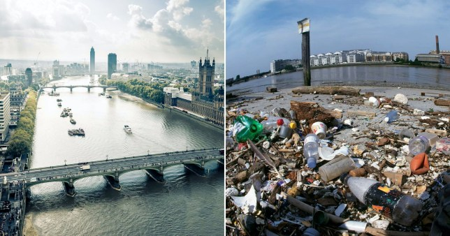 River Thames has some of the highest levels of plastic in world