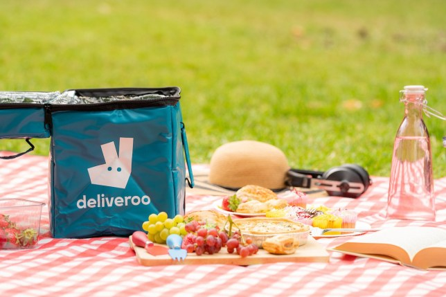 Deliveroo bag on picnic
