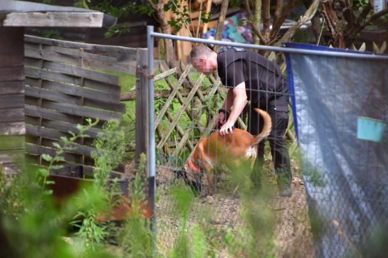 Hanovre, Allemagne - 29 juillet: (NOTE DU RÉDACTEUR: Une partie de cette image a été pixélisée pour masquer l'identité de l'agent de police) Un agent de police utilise un chien de détection tout en creusant à un allotissement alors que la police continue de fouiller la zone en relation avec la disparition de Madeleine McCann le 29 juillet 2020 à Hanovre, Allemagne.  Les enquêteurs allemands ont commencé tôt le deuxième jour de la recherche d'un lotissement qui appartenait à Christian Brueckner, qui a été désigné comme le principal suspect dans la disparition de l'enfant britannique, Madeleine McCann.  Madeleine McCann a disparu d'un appartement à Praia Da Luz, au Portugal, alors qu'elle était en vacances avec ses parents et ses frères et sœurs jumeaux en mai 2007. (Photo par Alexander Koerner / Getty Images)