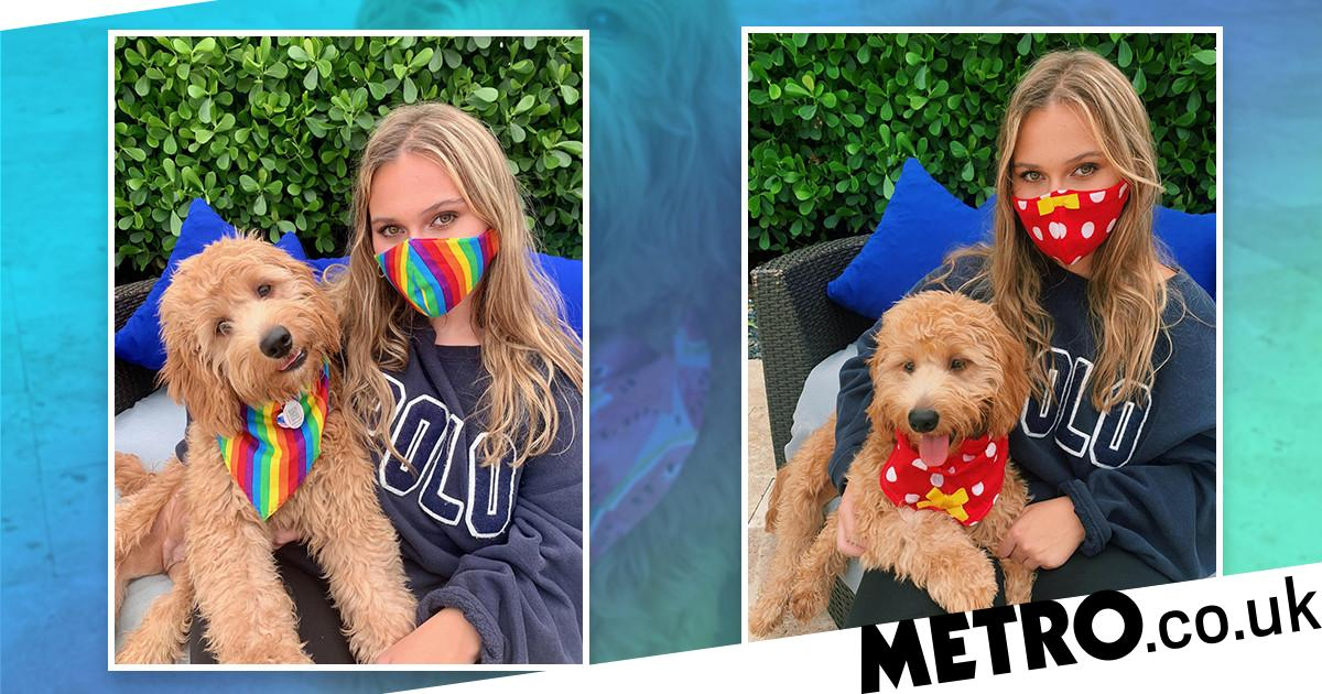 You can now get matching face masks and bandanas for you and your dog
