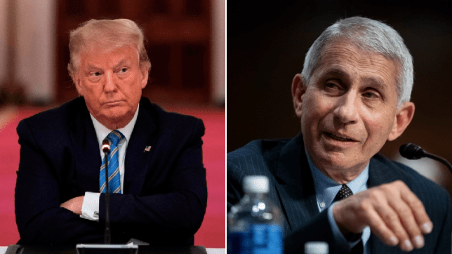 Photo of Donald Trump next to photo of Anthony Fauci